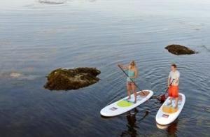 2 clases de surf o 1 clase de paddle surf. Nivel iniciación o avanzado