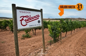 Escapada a la Ribera del Duero: 2 noches+comida+bodega