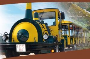 Escapada a la Ribeira Sacra con tren turístico, visita a bodega y menú